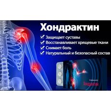 Хондрактин