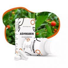 Ashwamin